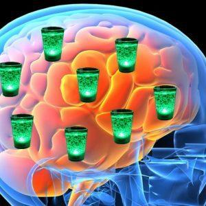 Ноотропил и алкоголь: совместимость, через сколько можно, последствия