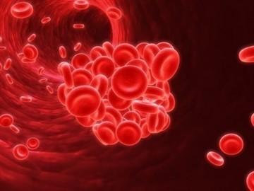 Глюкофаж и алкоголь: совместимость, через сколько можно, последствия