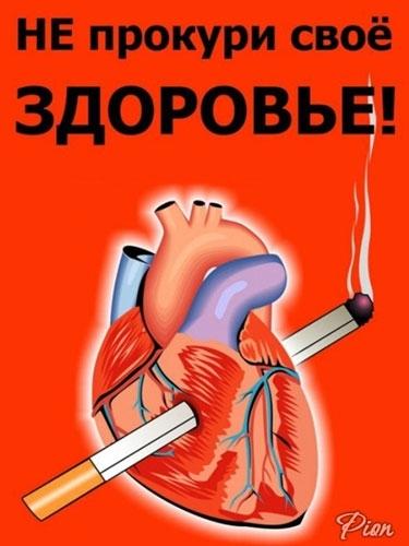 День борьбы с курением: международный, отказа, всемирный