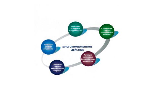 Алфлутоп и алкоголь: совместимость, через сколько можно, последствия