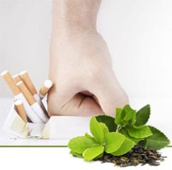 Монастырский чай от курения: против, способ применения сбора, как пить, помогает ли