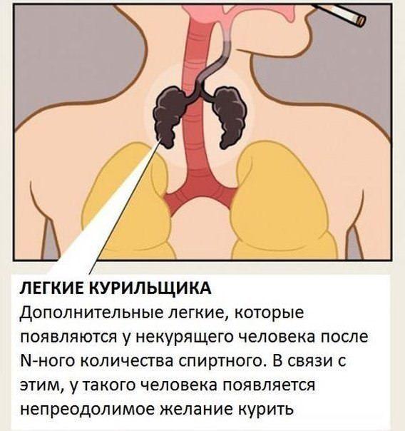 Как проверить легкие курильщика: в домашних условиях