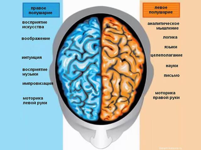 Как курение влияет на сосуды головного мозга: при сотрясении