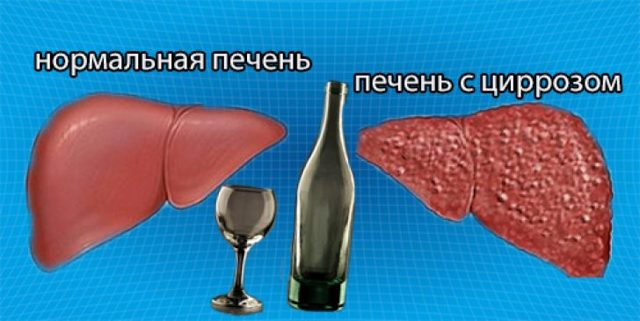 Крестор и алкоголь: совместимость, через сколько можно, последствия
