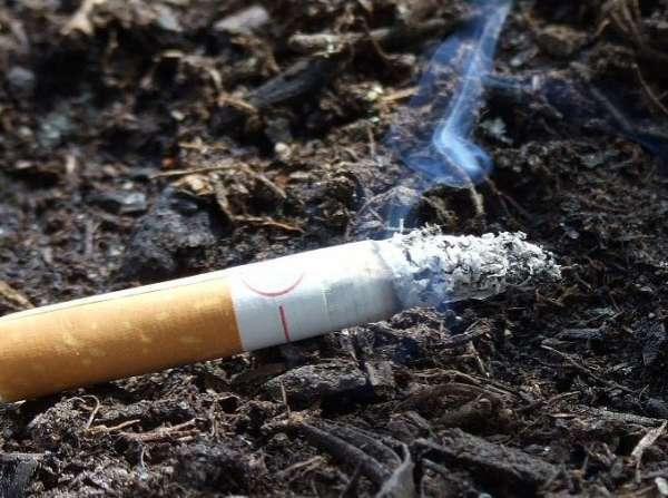 Тошнит от сигарет: почему, может ли, причина, что делать