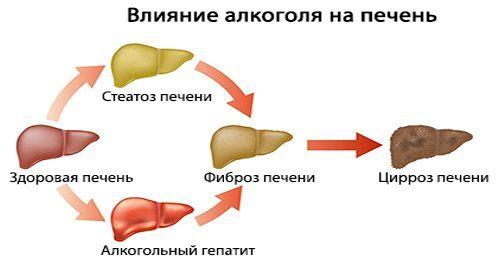Церепро и алкоголь: совместимость, через сколько можно, последствия
