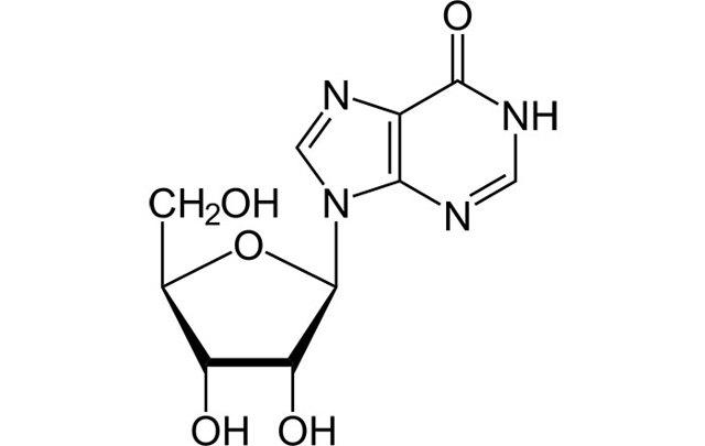 Рибоксин и алкоголь: совместимость, через сколько можно, последствия