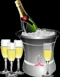 Зодак и алкоголь: совместимость, через сколько можно, последствия