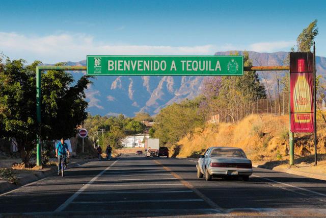 Настоящая текила из Мексики: мексиканская, ассортимент, лучшая