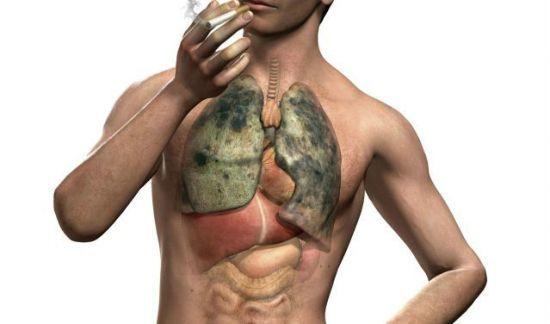Как очистить легкие от никотина: организм, очищение