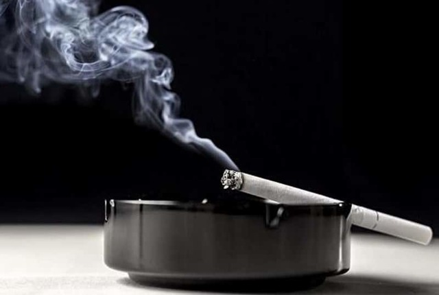 Сигареты без запаха табачного дыма: табака, список